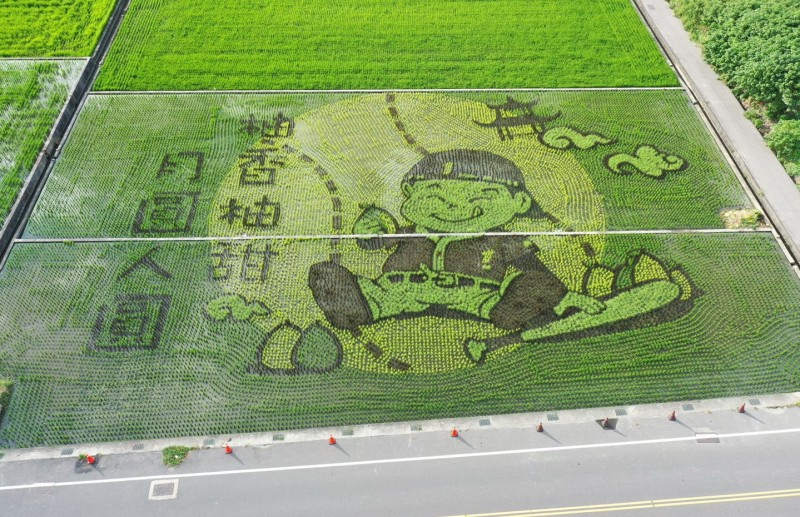 Yuanli Farmers' Association celebrates Mid-moon Festival with decorative rice fields