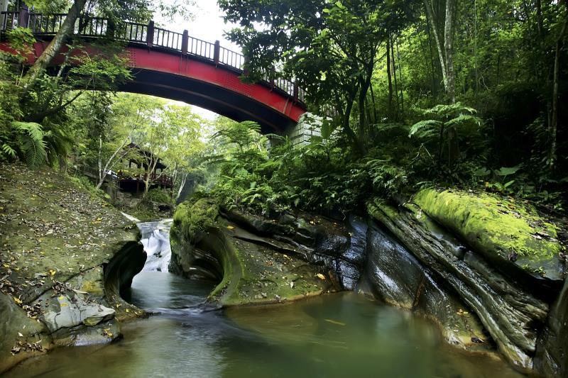 大窩生態園區 橋邊